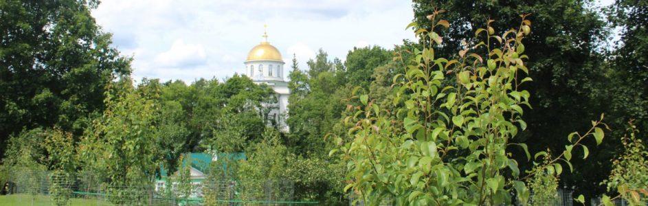 Ура! Каникулы! Свято-Успенский Псково-Печерский монастырь